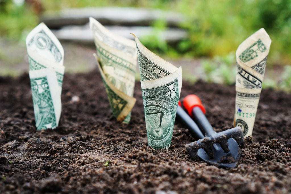 Money saved through direct access and physical therapy growing out of the ground.