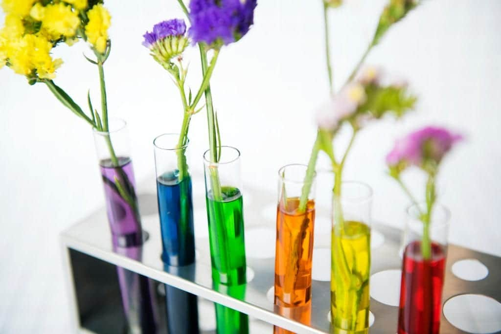 Flowers In Diagnosis Test Tubes