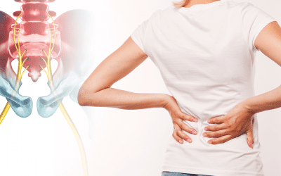 The Sciatica Nerve Pain Guide